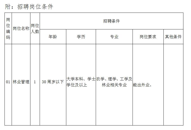 辽宁沈阳市自然资源局大东分局招聘公告