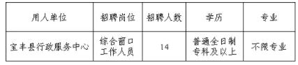 2021年河南平顶山市宝丰县行政服务中心综合窗口招聘公告